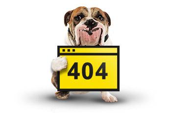 betFirst Casino 404